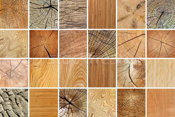 Groot collectie houten texturen natuurlijke Stockfoto © serg64