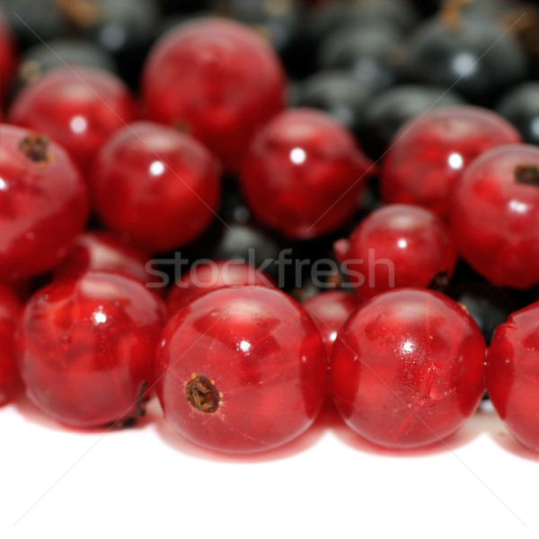 Stock photo: red currant and blackcurrant
