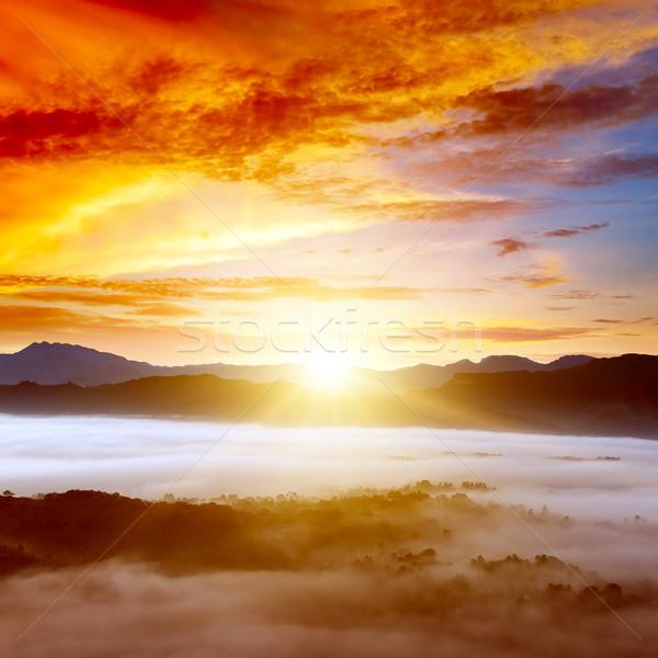 Foto stock: Amanecer · montanas · niebla · cielo · nubes · forestales