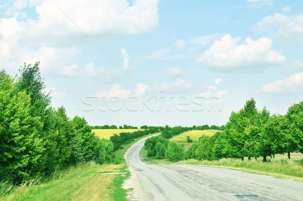 Autostrady drzewo chmury trawy drogowego lasu Zdjęcia stock © Serg64