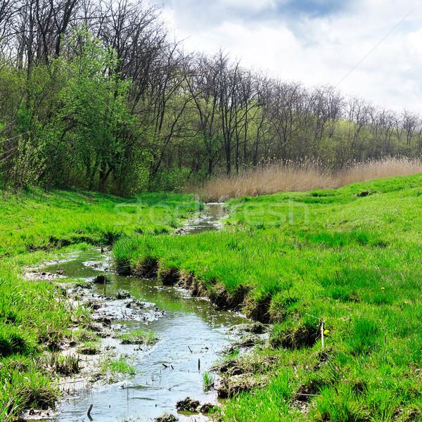 Strumienia zielone łące niebo kwiat chmury Zdjęcia stock © Serg64