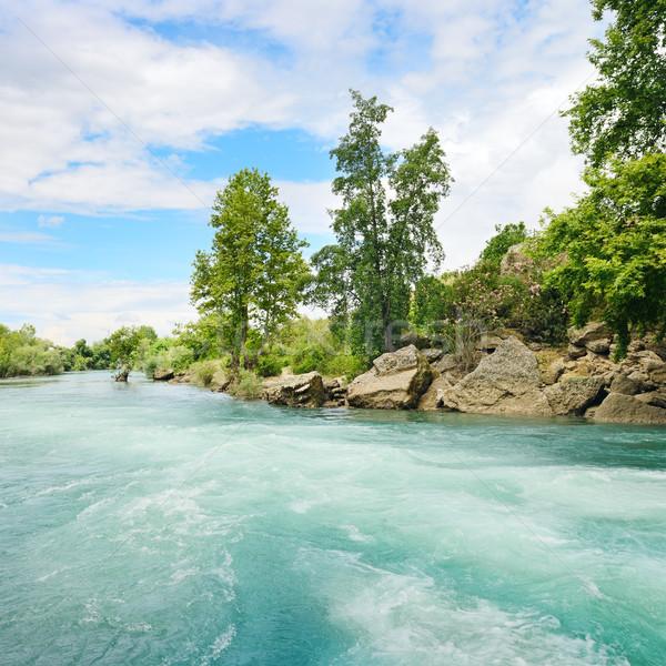 Güzel muhteşem nehir su bahar ahşap Stok fotoğraf © serg64