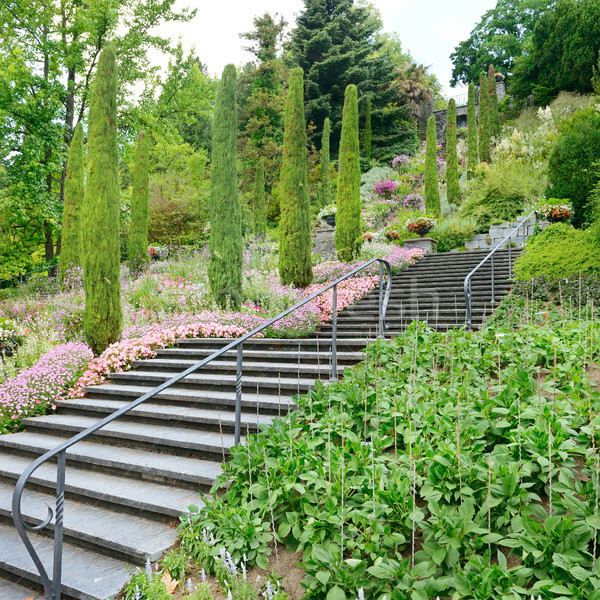 beautiful staircase in a beautiful park Stock photo © serg64