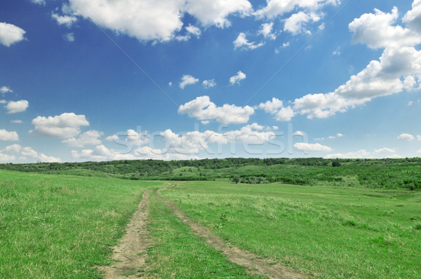 road in field Stock photo © Serg64