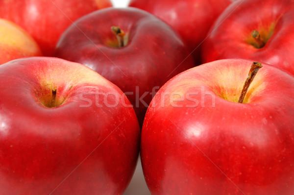 Maçãs branco comida fundo frutas sobremesa Foto stock © Serg64