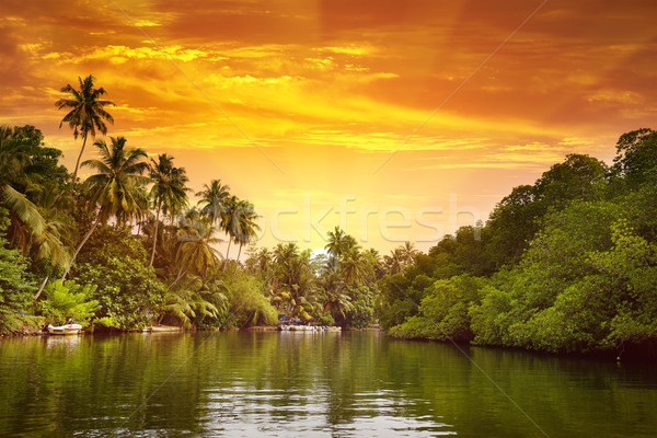 Sunrise in picturesque lagoon Stock photo © Serg64