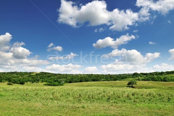 green hill Stock photo © Serg64