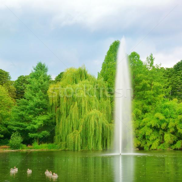 большой фонтан город парка небе воды Сток-фото © Serg64