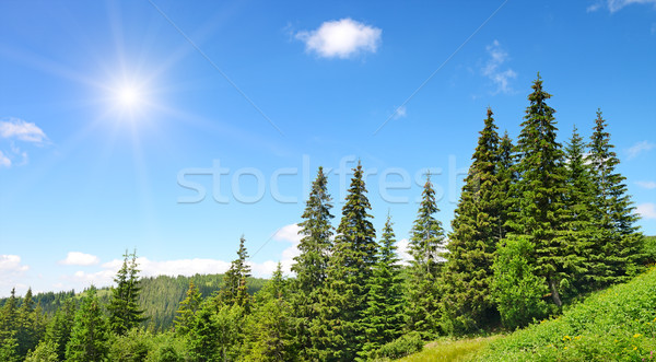 Stock photo: High mountains and sun