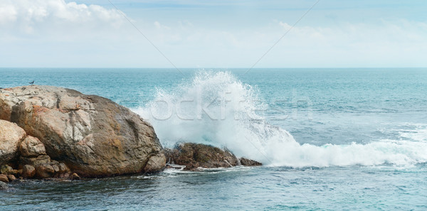 Rock in the ocean Stock photo © serg64