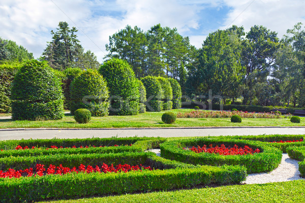 Beautiful flowerbed and fields Stock photo © serg64