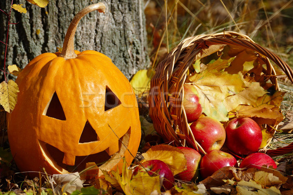 Halloween pumpkin and a basket with apples on the background of  Stock photo © serg64
