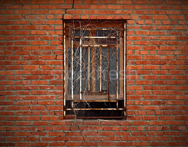 Window on aged brick wall wreathed with dried ivy Stock photo © serge001