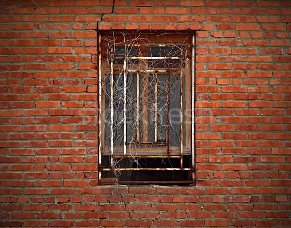 Fenster Backsteinmauer getrocknet Efeu geschlossen Stock foto © serge001