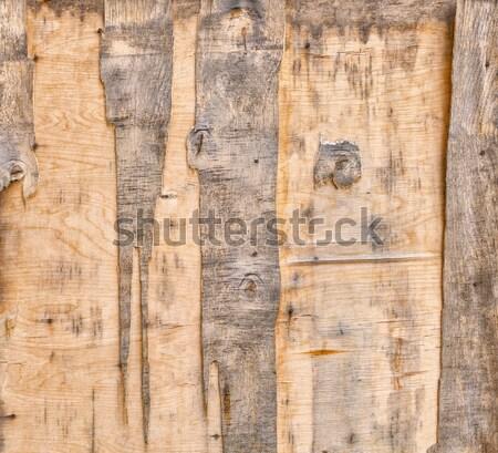 öreg fából készült ajtó kopott furnérlemez darab Stock fotó © serge001