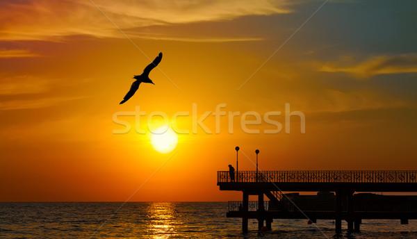 Sunset over the sea Stock photo © serge001