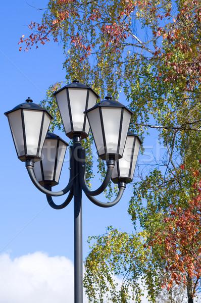 Parco luce strada vetro Foto d'archivio © serpla