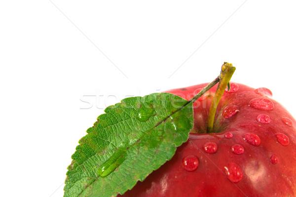 Photo stock: Pomme · rouge · gouttes · d'eau · peu · profond · alimentaire · nature