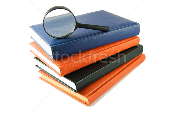 Loupe livres blanche affaires verre Photo stock © serpla