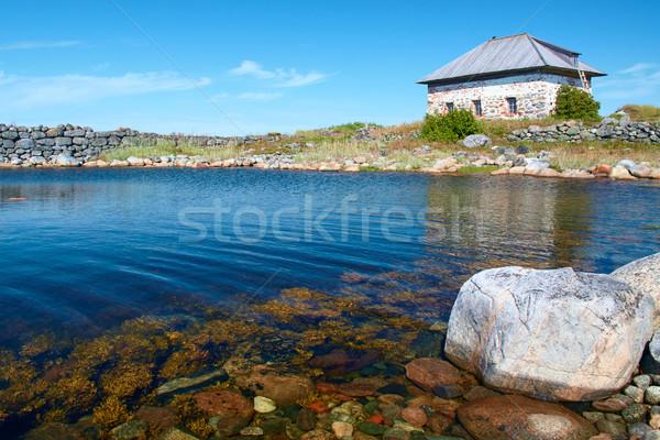 Artificiale isola acqua erba verde pietra Foto d'archivio © serpla
