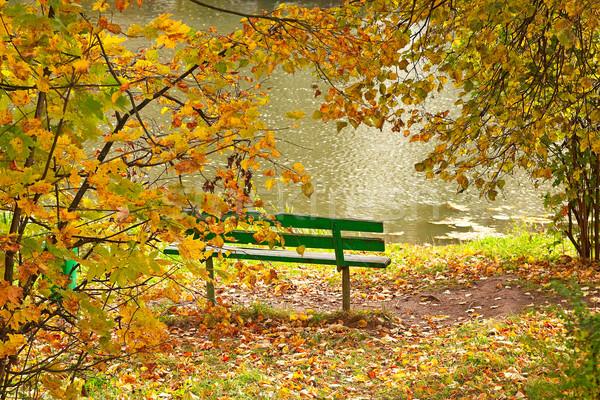 Verde panchina banca stagno autunno legno Foto d'archivio © serpla