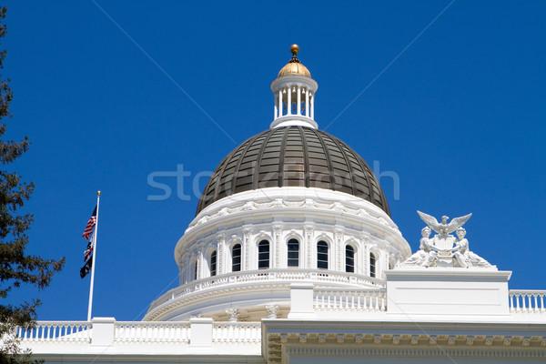 カリフォルニア ドーム 建築の 細部 青空 ストックフォト © sframe