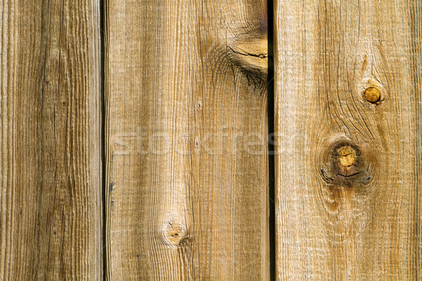 Knotty Wood Texture Stock photo © sframe