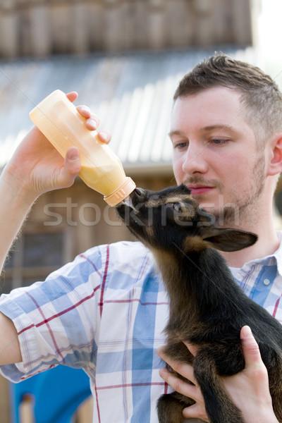 男 ボトル ヤギ 赤ちゃん 小さくする 乳製品 ストックフォト © sframe