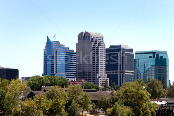 Skyline высокий зданий шоу дерево Сток-фото © sframe