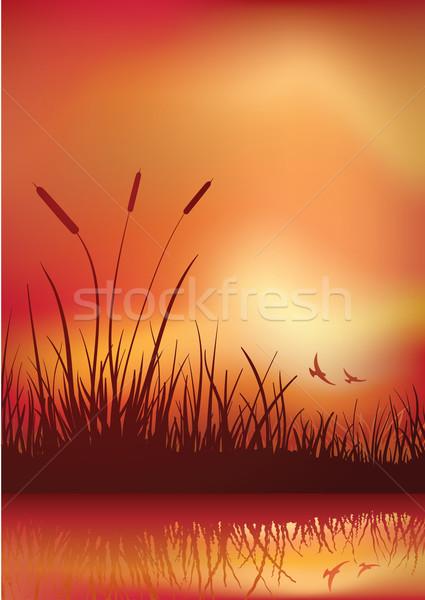 Zonsondergang communie afzonderlijk vector bestand Stockfoto © sgursozlu