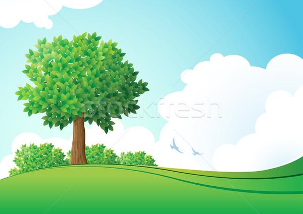 зеленый пейзаж Элементы отдельно вектора Сток-фото © sgursozlu