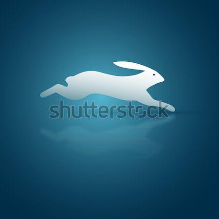 Scurry Rabbit Stock photo © sgursozlu