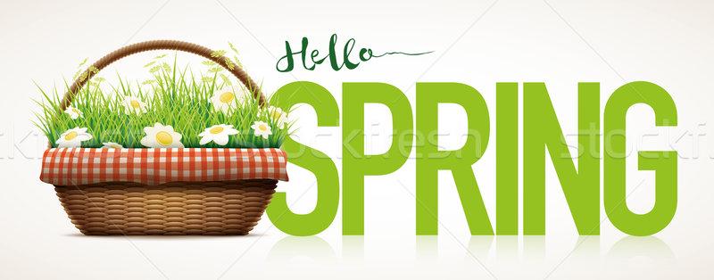 Spring Time Stock photo © sgursozlu