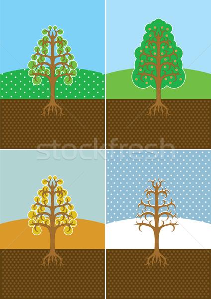 Cztery pory roku drzew drzewo słońce streszczenie śniegu Zdjęcia stock © sgursozlu
