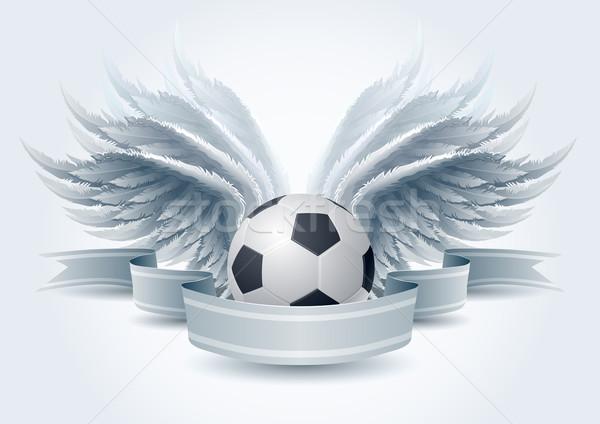 Futebol anjo bandeira detalhado vetor Foto stock © sgursozlu