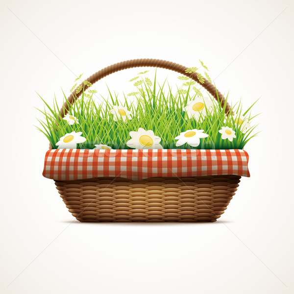 Spring in wicker basket Stock photo © sgursozlu