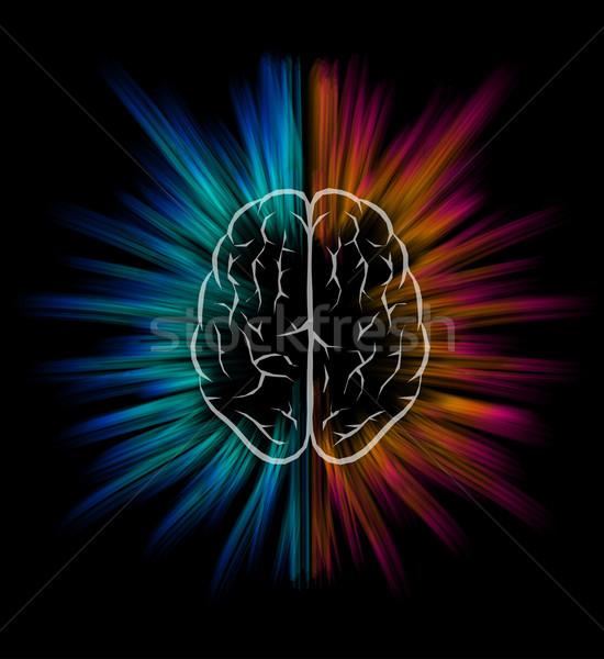 Gehirn Explosion Vektor schwarz Elemente Stock foto © sgursozlu