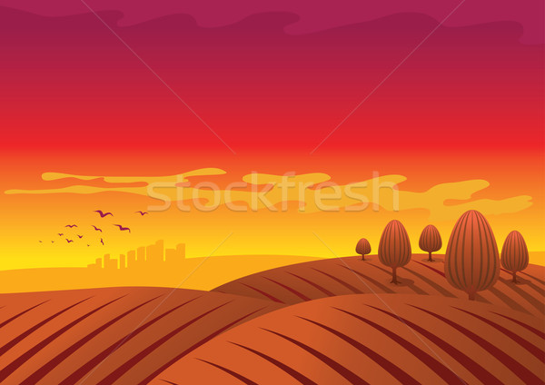 Rot Bereich Vektor Landschaft Illustration Gras Stock foto © sgursozlu