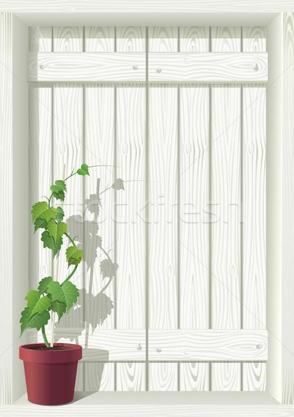 Blanco ventana detallado vector aislado ilustración Foto stock © sgursozlu