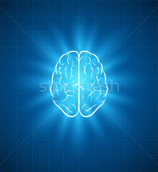 Cerveau plan vecteur séparément Photo stock © sgursozlu