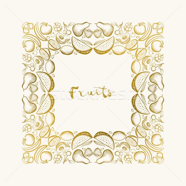 Сток-фото: рисованной · плодов · кадр · вектора · границе
