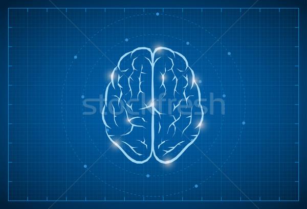 Plan cerveau symbole vecteur médicaux technologie Photo stock © sgursozlu