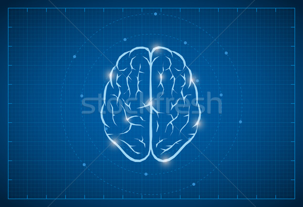 Blueprint Brain Symbol Stock photo © sgursozlu