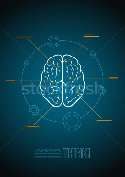 Mózgu wektora szablon medycznych tle Zdjęcia stock © sgursozlu
