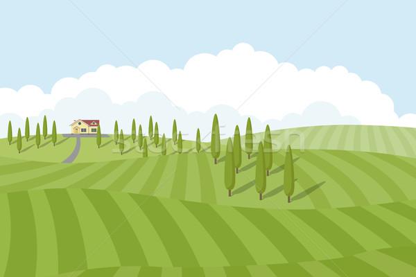 Stok fotoğraf: Resim · küçük · ağaçlar · alanları · etrafında · stil
