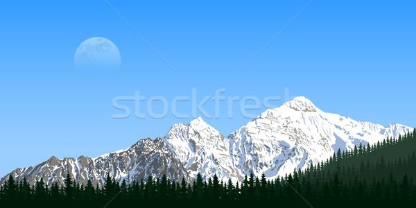 mountain peak landscape Stock photo © shai_halud