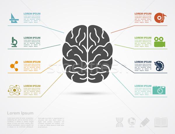 Stock photo: brain concept