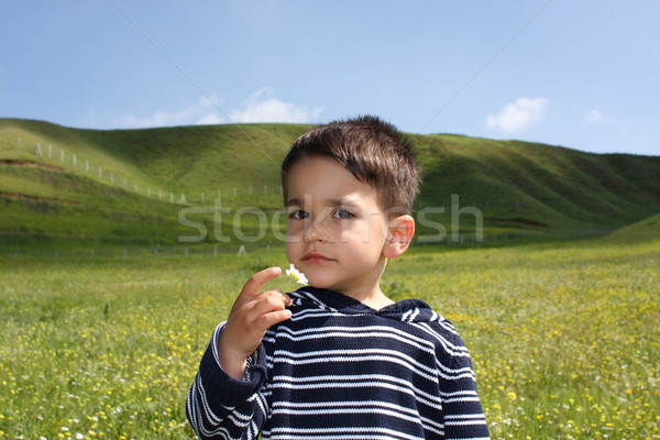 Young boy with a flower  Stock photo © shamtor
