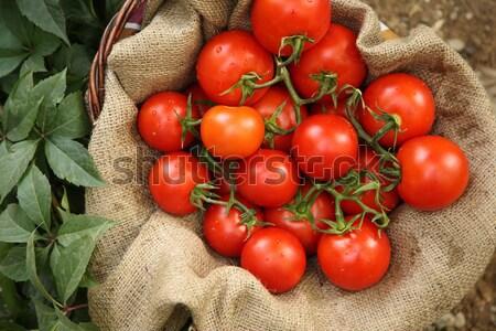 корзины органический помидоров продовольствие человека фрукты Сток-фото © shamtor