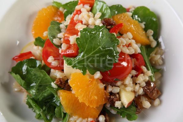 оранжевый Салат роскошь ресторан томатный презентация Сток-фото © shamtor
